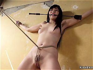 slave trainers buttfuck pounding petite asian